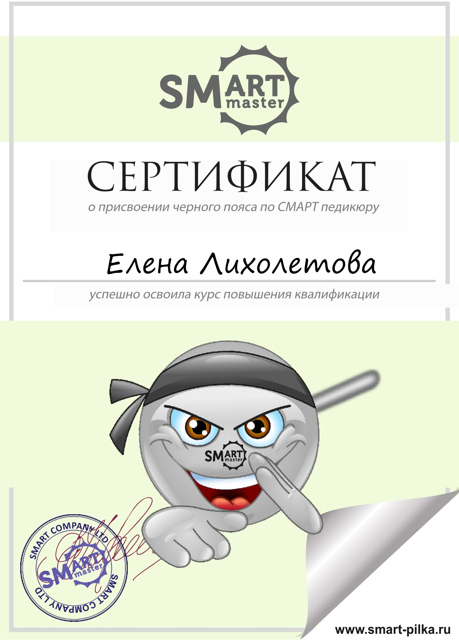 Лихолетова Смарт пилка сертификат