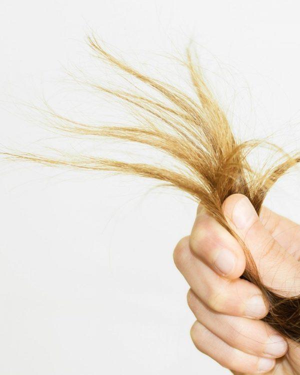 сухие концы волос лечение